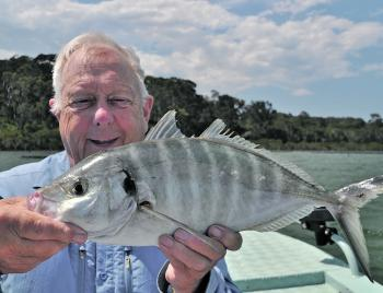 There are some nice trevally on offer in the waters around Tathra.