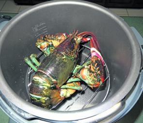 Add salted water to the bottom of the steaming pot and place the lobster onto a trivet to keep it above the water; this ensures the lobster is steamed rather than boiled (steaming is a lot more gentle on the flesh and is more forgiving on the timing – it'