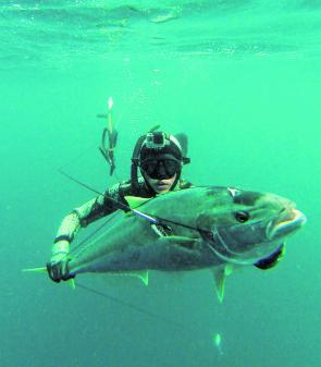 Mac Riddle surfacing with a great yellowtail kingfish.
