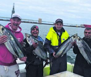 A group of happy guys with a nice feed of albacore from Mathew Hunts Fishing Charters. Photo courtesy of Mathew Hunts Fishing Charters.