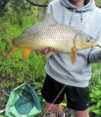 The common European carp is quite an overlooked and underrated sportfish. The Yarra River is a great place to fish for them close to Melbourne all year round.