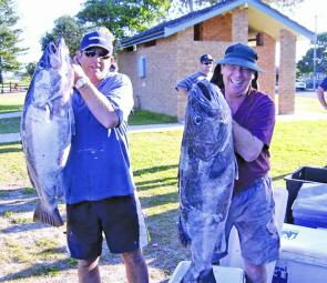 Rod and Dave seem pretty happy with these treasures from the deep weighed in for the NSWFCA offshore titles.